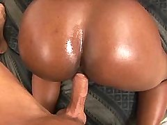 Honky fucks girl with massive boobs